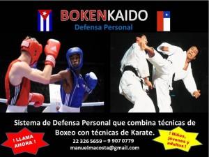 Curso de defensa personal con técnicas de boxeo, karate y otras.