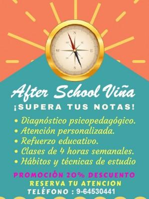 after school viÑa consultora educacional integral y psicopedagógica