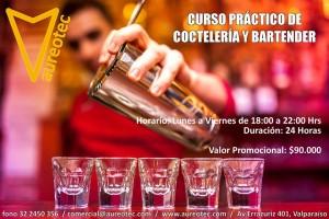Curso práctico de coctelería y bartender en valparaiso
