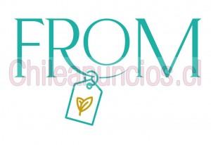 tienda virtual, ventas por internet chile emprendedores