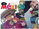 mariachi mexico chile a domicilio desde 39.990