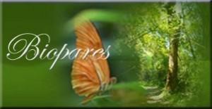 biomagnetismo,imanes que curan tu cuerpo, de muchas enfermedades