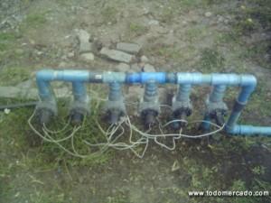 Instalaci n de riego autom tico construcci n de jardines for Jardines con maicillo