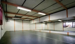 salas de ensayo para danza, teatro, artes escénicas // danza ebano