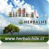 HERBALIFE CHILE Distribuidor